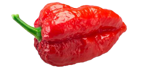 Ghost Pepper facts